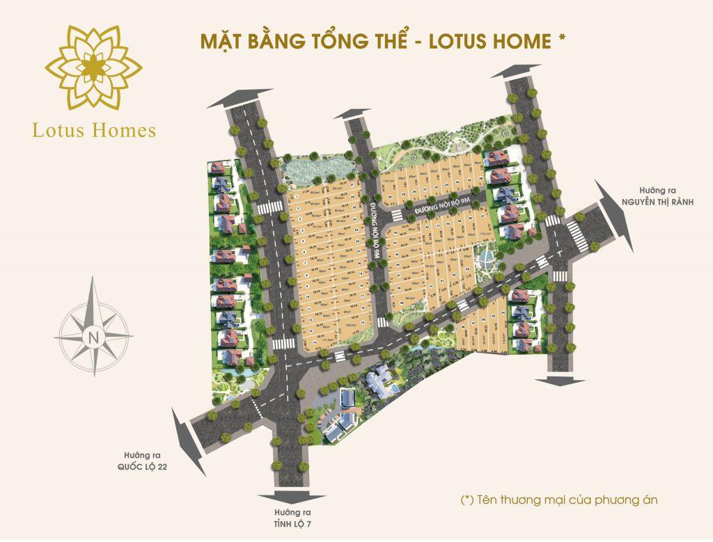 Mặt bằng tổng thể Lotus Homes